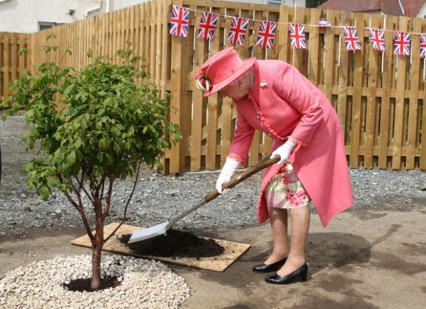 Richmond and Twickenham Times: The Queen's Green Canopy, will launch in May.