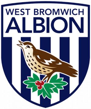 Richmond and Twickenham Times: Football Team Logo for West Bromwich Albion