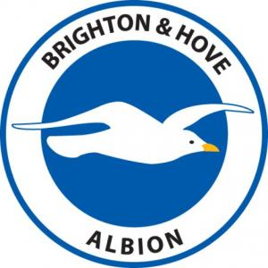 Richmond and Twickenham Times: Football Team Logo for Brighton & Hove Albion