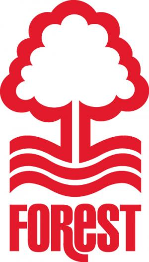 Richmond and Twickenham Times: Football Team Logo for Nottingham Forest