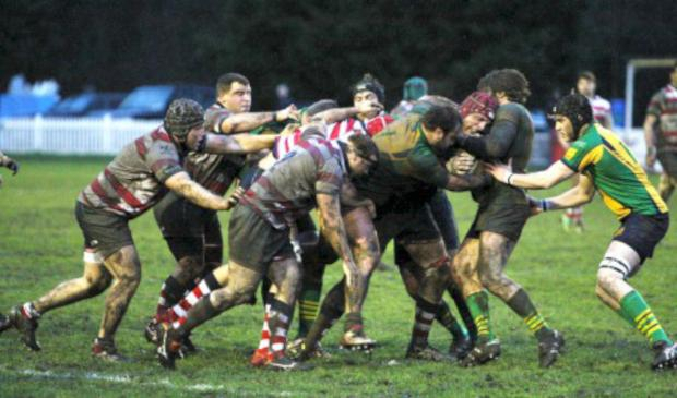 Richmond and Twickenham Times: Solid: The Rosslyn Park pack on the drive during the 28-6 win over Henley Hawks on Saturday              All pictures: David Whittam