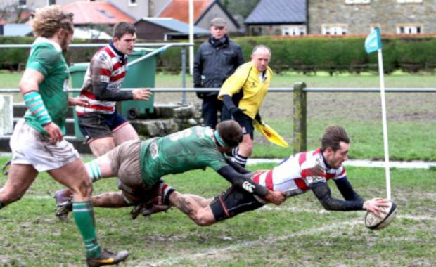 Richmond and Twickenham Times: Over: Ed Lewis Pratt scores Park's first try on Wharfedale's slopping pitch               All pictures: David Whittam