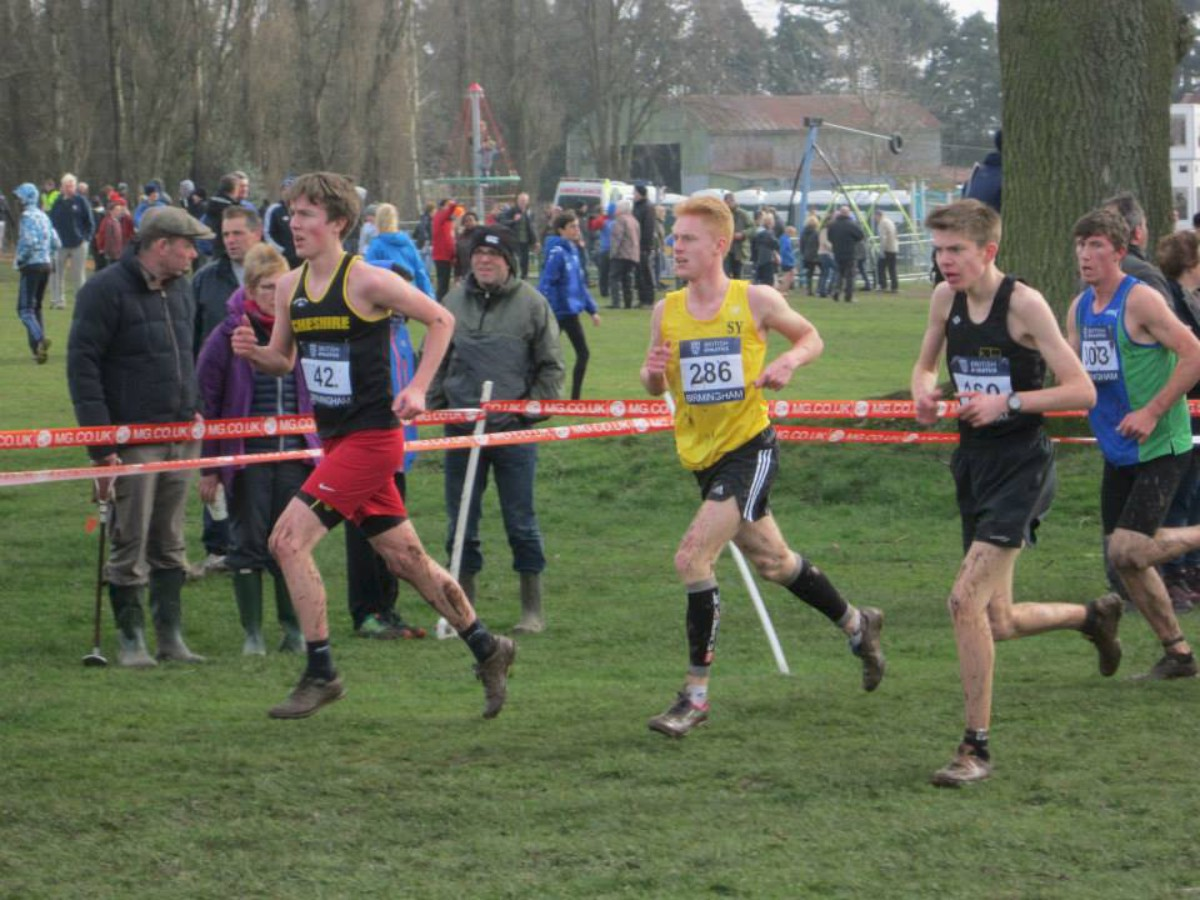 Unscathed: Harvey White, in the gold vest, made a successful return from injury at the National Inter-Counties Cross-Country Championships in Birmingham