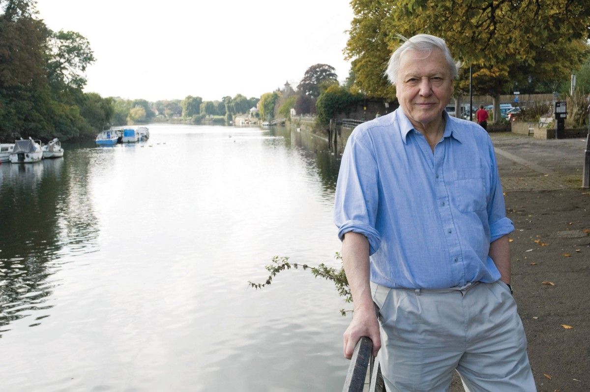 Sir David: Recognised the incredible work of Kew. Photography by Tricia de Courcy Ling