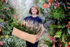 Kew Gardens' Orchid Festival runs from February 6 to March 6