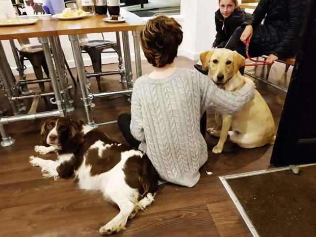 Dog Friendly Café Paws For Coffee Opens In East Sheen