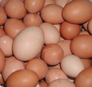 Richmond and Twickenham Times: Shopkeepers ban youngsters from buying eggs