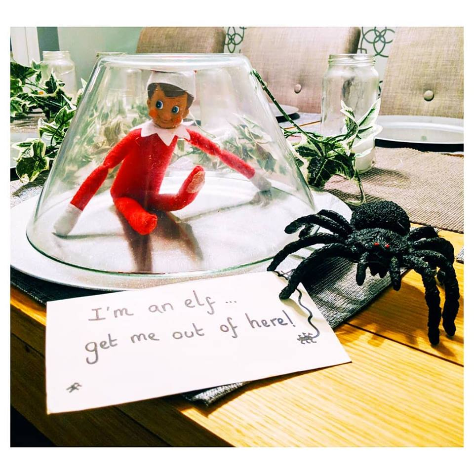 Ready for some elf-spiration? Here's some great Elf on the Shelf ideas