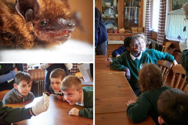 Bat Day was an enjoyable one for children at Clarendon School.