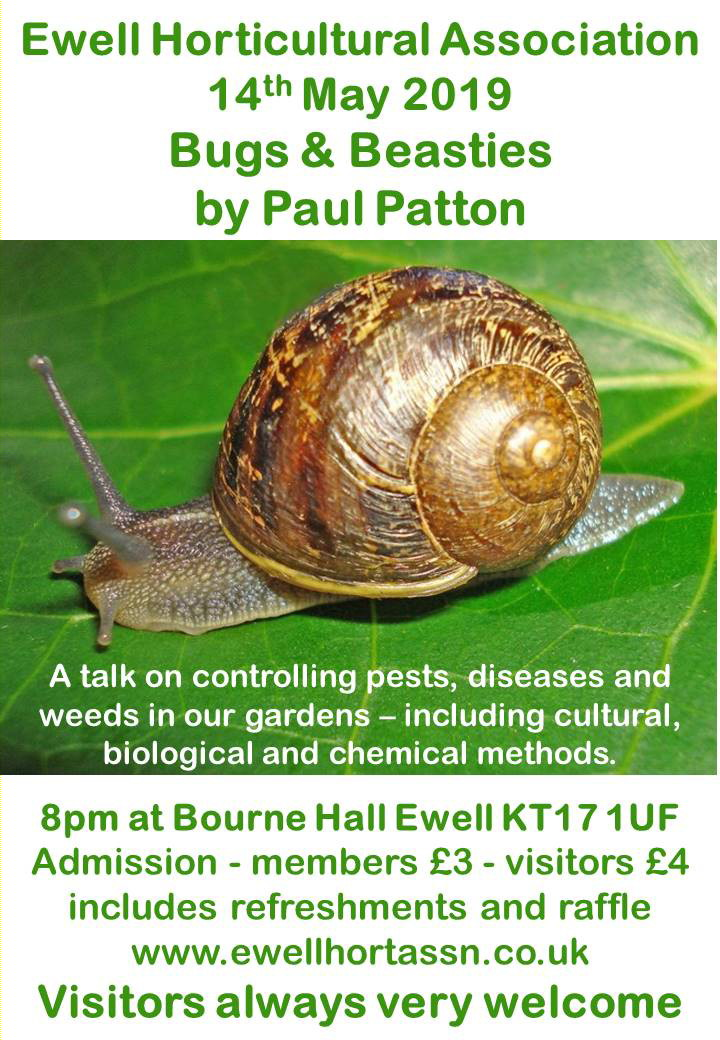 A Talk by Paul Patton entitled 'Bugs & Beasties'